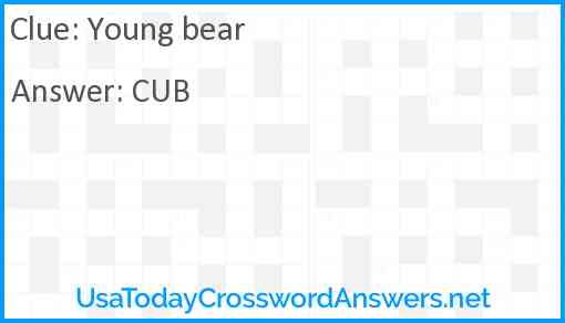 Young bear Answer